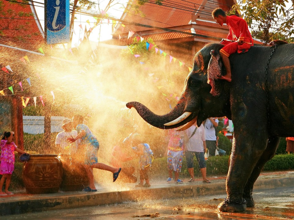 elefante_Songkran_restaurante_thai_gardens-ret